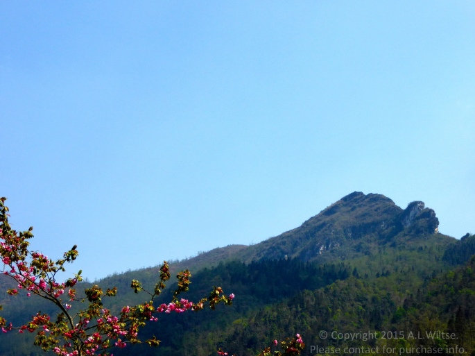 Dragon Mountain-Sapa