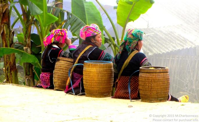 Hmong Women on a Hill-Sapa